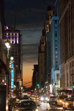 NYC 2017-9679